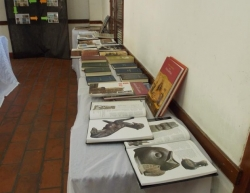 Exposición de Carreras_2